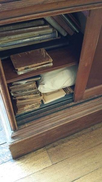Secret-library-cupboard